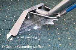 Rug Cleaning Melton