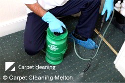 Carpet Cleaners Melton 3337