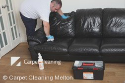 Melton 3337 Leather Cleaning