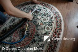 Rug Cleaning Services in Melton