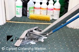 Melton 3337 Steam Carpet Cleaning Company